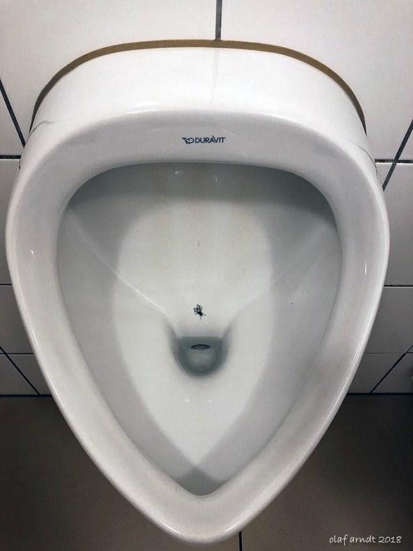 urinal fly.jpg